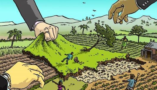 Ilustrasi penguasaan lahan. Dok/ wordpress.clarku.edu
